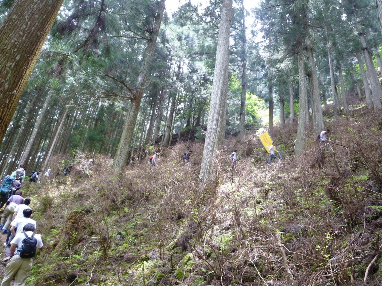 6.日本の森を残していきたい
